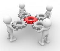 Organisations-Entwicklung